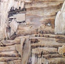 Abstract Mixed-media Art Painting title 'Wood Texture I' by artist Somen Debnath