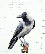 art, painting, watercolor, paper, animal, bird