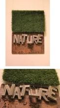 Mixedmedia Sculpture titled 'Nature' by artist Abhishek Salve