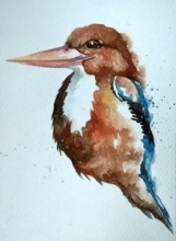Animals Watercolor Art Painting title Kingfisher by artist Anjana Sihag