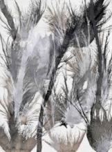 Exploflora Series No. 19   Painting by artist Sumit Mehndiratta   acrylic   canvas