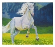 Horse | Painting by artist Shiv Kumar Swami | oil | Canvas