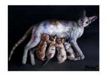 Feeding Milk | Painting by artist Shiv Kumar Swami | oil | Canvas