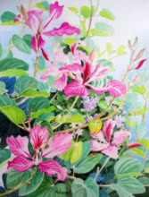 Bauhinia And Duranta II | Painting by artist Vishwajyoti Mohrhoff | watercolor | Campap Paper