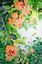 Photorealistic Watercolor Art Painting title Schizopetalus Hibiscus And Catharanthus by artist Vishwajyoti Mohrhoff