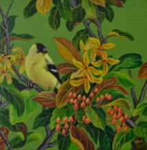 Nature Acrylic Art Painting title 'Oriole 3' by artist Vani Chawla