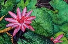 Gaurav Dinesh | Watercolor Painting title Circle Of Life on Paper | Artist Gaurav Dinesh Gallery | ArtZolo.com
