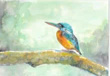 Yashodan Heblekar Paintings | Watercolor Painting - Blue Eared Kingfisher by artist Yashodan Heblekar | ArtZolo.com
