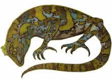 Chameleon  | Drawing by artist Atul Bangal |  | etching | Paper