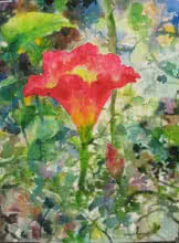 Red Lily In Nature | Painting by artist Manas  Biswas | watercolor | Paper