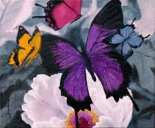 Flower With Butterfly - 336x30 | Painting by artist Sulakshana Dharmadhikari | oil | Canvas