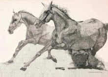 Ink Paintings | Drawing title Two Running Horses on Paper | Artist Kamalesh Salaskar
