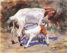 Animals Oil Art Painting title 'Goat' by artist Swapnil Patil