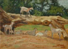 Animals Oil Art Painting title 'Old Wood' by artist Swapnil Patil
