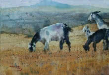 Rupesh Sonar | Watercolor Painting title Goats on Paper | Artist Rupesh Sonar Gallery | ArtZolo.com
