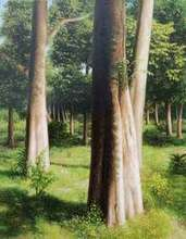 Nature Oil Art Painting title Serenity by artist Arabinda Mukherjee