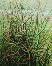 Nature Oil Art Painting title Blooming Cactus by artist Arabinda Mukherjee