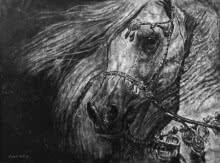 Arabian Beauty | Painting by artist Anand Sai | charcoal | Canvas