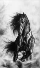 Animals Charcoal Art Painting title 'Spirit 3' by artist Anand Sai