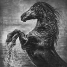Anand Sai | Charcoal Painting title Wild Spirit on Canvas | Artist Anand Sai Gallery | ArtZolo.com