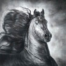 Animals Charcoal Art Painting title 'Wild Spirit 2' by artist Anand Sai