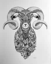 Pen Paintings | Drawing title Goat 3 on Paper | Artist Kushal Kumar