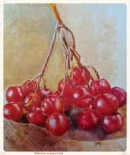 Still-life Watercolor Art Painting title 'Cherry' by artist Dr.uday Bhan