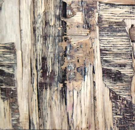 Somen Debnath | Mixed-media Painting title Wood Texture IV on wood | Artist Somen Debnath Gallery | ArtZolo.com