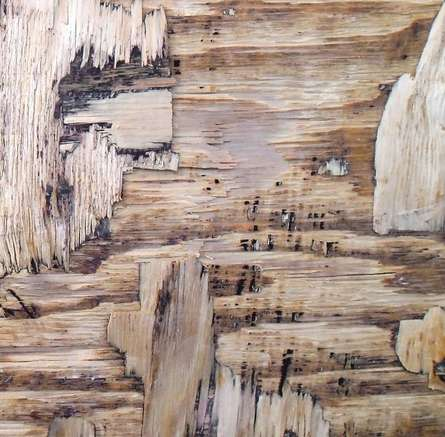Abstract Mixed-media Art Painting title Wood Texture I by artist Somen Debnath