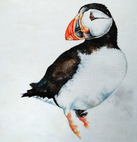 Animals Watercolor Art Painting title Puffin by artist Anjana Sihag