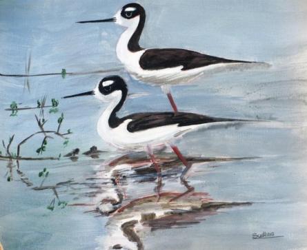 Black Necked Stilt | Painting by artist Sadhna Tiwari | acrylic | Canvas