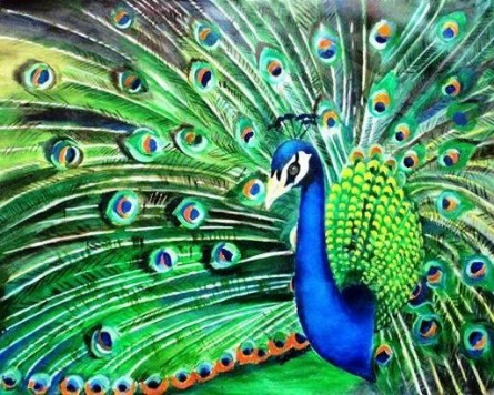 Peacock | Painting by artist Sadhna Tiwari | acrylic | Canvas