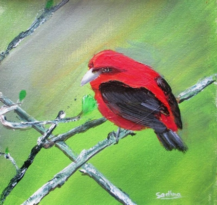 Red - Black Sparrow | Painting by artist Sadhna Tiwari | acrylic | Canvas