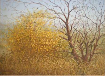 Landscape Oil Art Painting title 'The Stems' by artist Fareed Ahmed