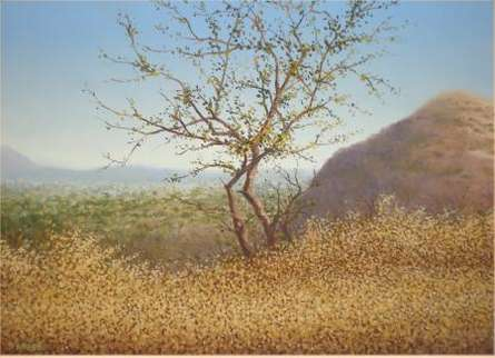 Stand Alone Tree | Painting by artist Fareed Ahmed | oil | Canvas Board
