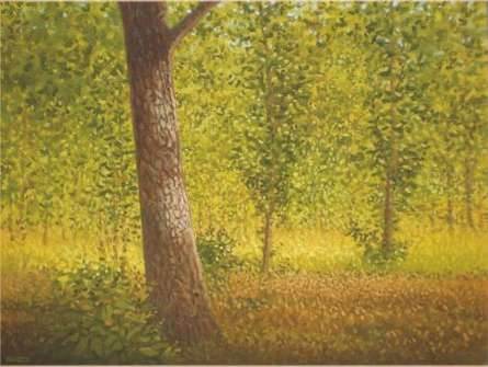 Landscape Oil Art Painting title 'Tree Trunk II' by artist Fareed Ahmed