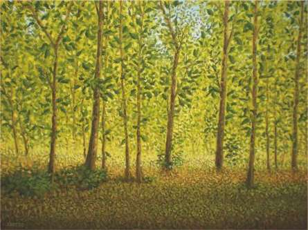 Landscape Oil Art Painting title 'Between The Trees' by artist Fareed Ahmed