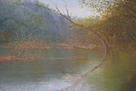 Landscape Oil Art Painting title 'Nature Reflection I' by artist Fareed Ahmed