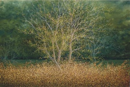 The Tree   Painting by artist Fareed Ahmed   oil   Canvas