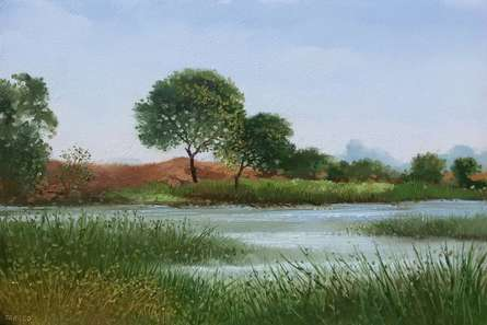 Fareed Ahmed | Oil Painting title Pond on Canvas Board | Artist Fareed Ahmed Gallery | ArtZolo.com