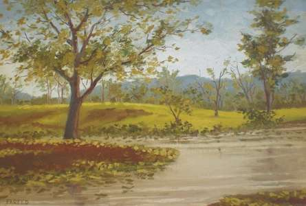 Foliage | Painting by artist Fareed Ahmed | Oil | Canvas Board