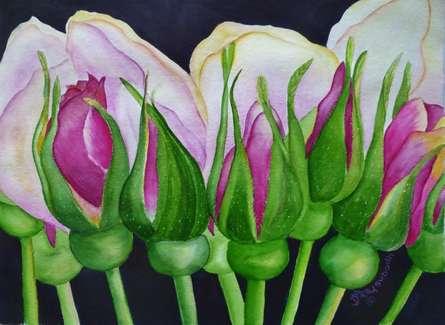 Rosebuds | Painting by artist Subodh Maheshwari | watercolor | Arches Paper