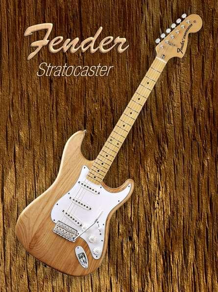 American Fender Stratocaster | Photography by artist Shavit Mason | Art print on Canvas