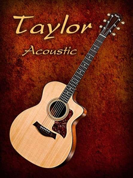 Wonderful Taylor Acoustic Guitar | Photography by artist Shavit Mason | Art print on Canvas