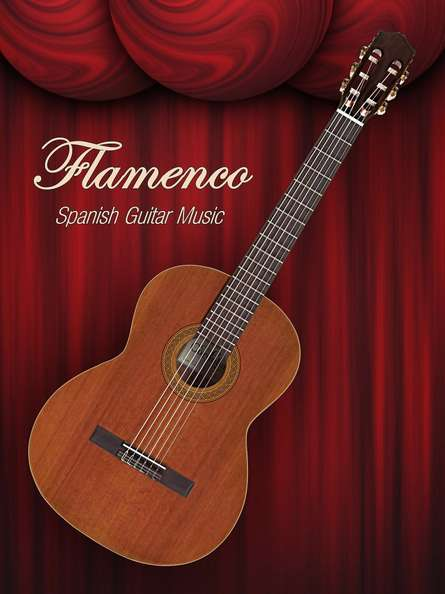 Flamenco Spanish Guitar Music | Photography by artist Shavit Mason | Art print on Canvas