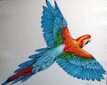 Macau | Drawing by artist Rajendra V |  | pen | Paper