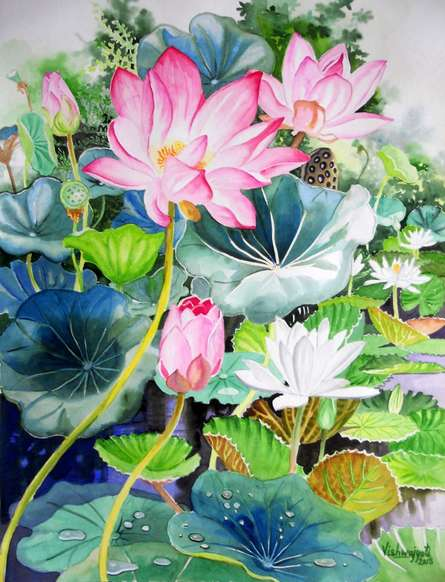 Vishwajyoti Mohrhoff | Watercolor Painting title Pink Lotus And White Water Lilies 2 on Campap Paper | Artist Vishwajyoti Mohrhoff Gallery | ArtZolo.com