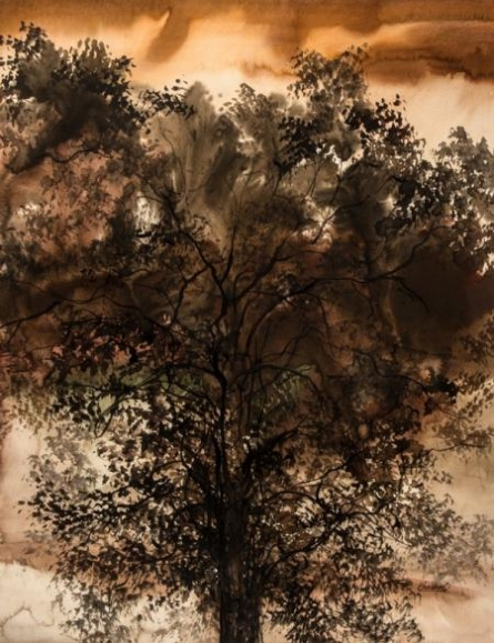 Subtle Nature | Painting by artist Bhaskar Rao | watercolor | Paper