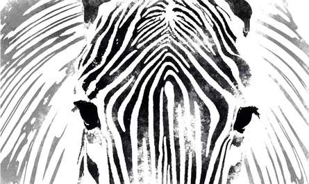 Zebra | Digital_art by artist Suraj Lazar | Art print on Canvas