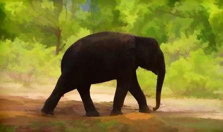 Lone Little Giant | Digital_art by artist ANIL KUMAR K | Art print on Canvas